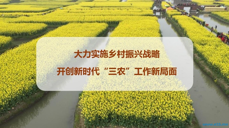 习近平总书记关于乡村振兴重要论述摘编